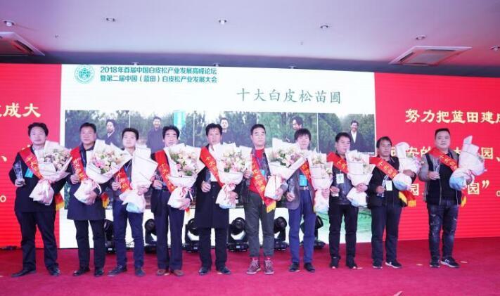 2018年首届中国白皮松产业发展高峰论坛蓝田开幕