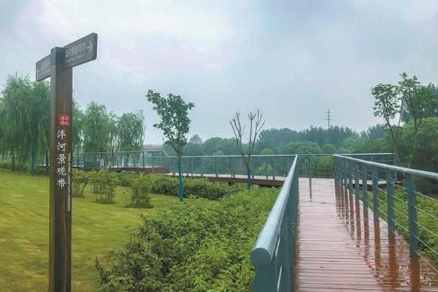 西安市沣西新城高质量推进沣河生态环境治理工作侧记.jpg