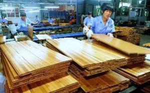 福建省莆田市秀屿区着力推进木材产业集聚发展转型升级.jpg
