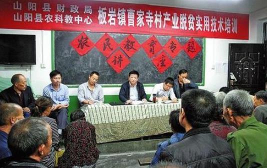 山阳县聚力发展村集体经济侧记.jpg